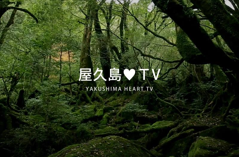屋久島♥(ハート)TV